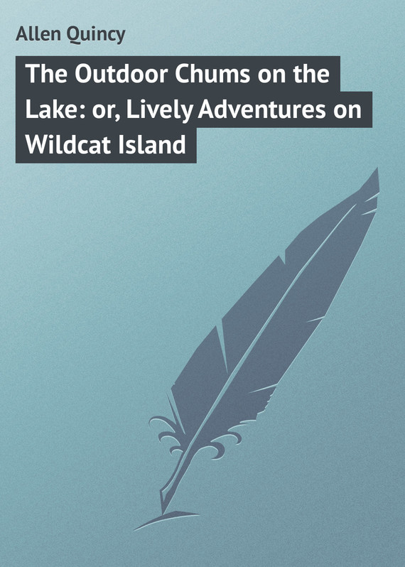 Allen Quincy The Outdoor Chums on the Lake: or, Lively Adventures on Wildcat Island постер sunrise on the lake