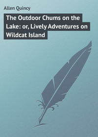Quincy, Allen  - The Outdoor Chums on the Lake: or, Lively Adventures on Wildcat Island