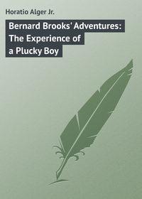 Jr., Horatio Alger  - Bernard Brooks' Adventures: The Experience of a Plucky Boy