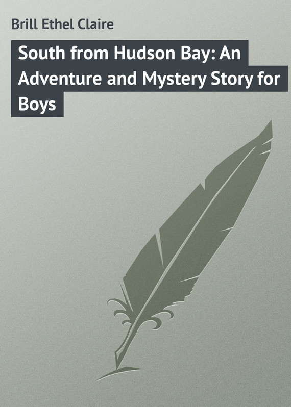 South from Hudson Bay: An Adventure and Mystery Story for Boys