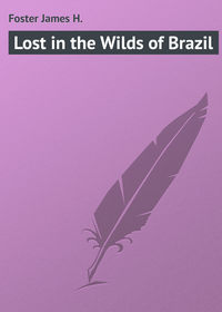 Foster James H. - Lost in the Wilds of Brazil