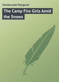 Vandercook Margaret - The Camp Fire Girls Amid the Snows