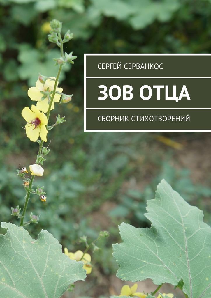 яркий рассказ в книге Сергей Серванкос