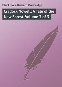 Blackmore Richard Doddridge - Cradock Nowell: A Tale of the New Forest. Volume 3 of 3