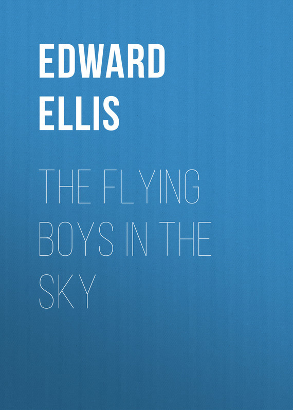 Ellis Edward Sylvester The Flying Boys in the Sky