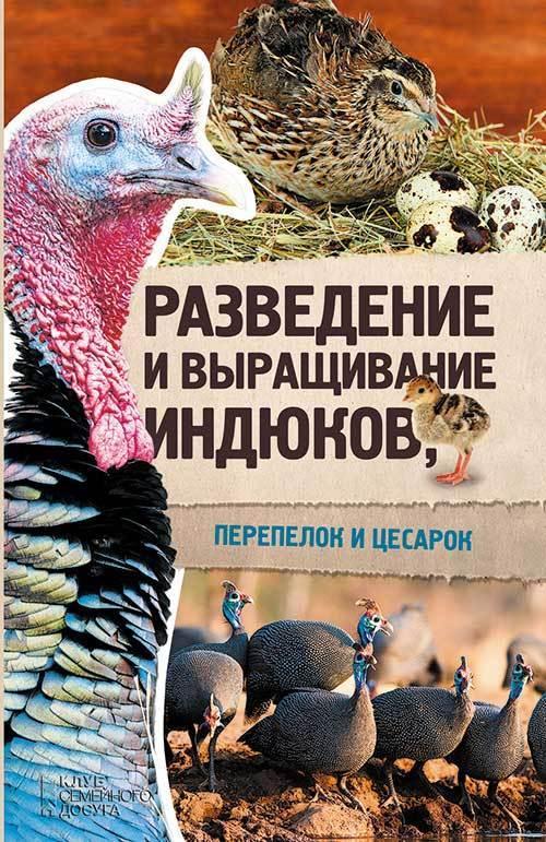 Отсутствует Разведение и выращивание индюков, перепелок и цесарок инкубаторских индюков белгородской области