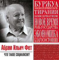 Фет, Абрам Ильич  - Что такое социализм