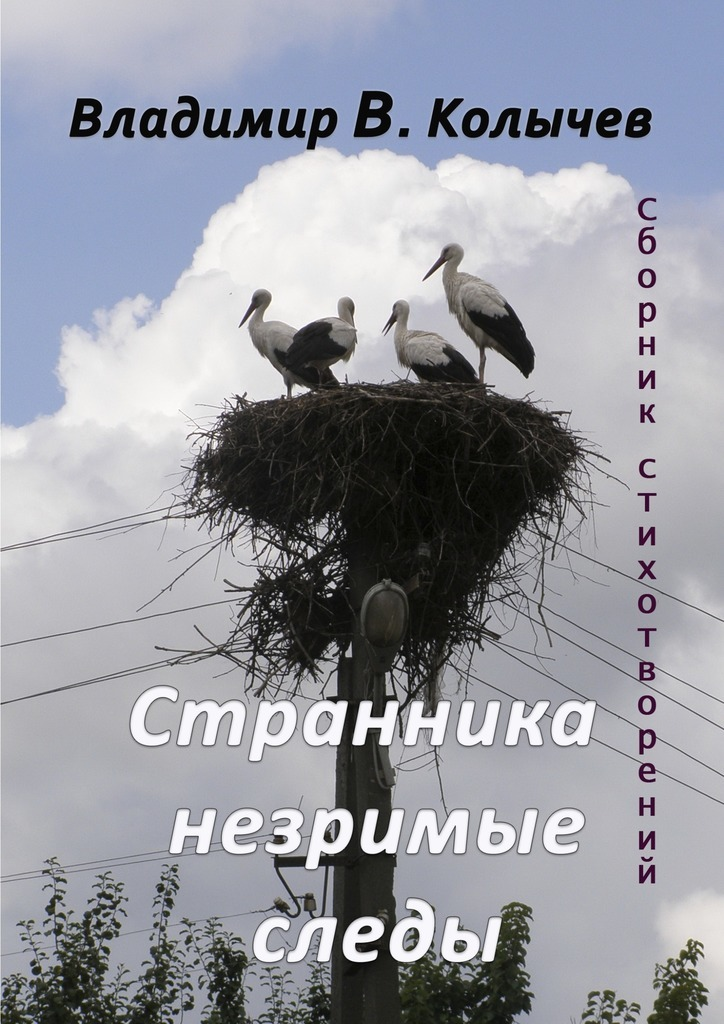 напряженная интрига в книге Владимир Васильевич Колычев