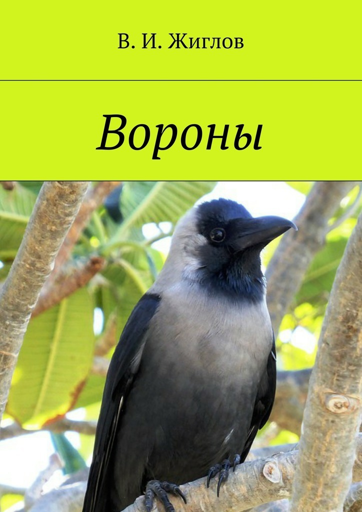 В. Жиглов - Вороны