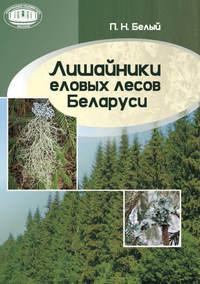 Белый, П. Н.  - Лишайники еловых лесов Беларуси