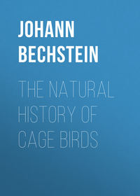 Matth?us, Bechstein Johann  - The Natural History of Cage Birds