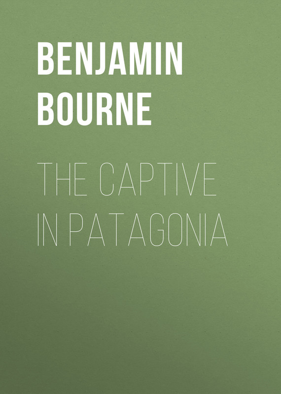 Bourne Benjamin Franklin The Captive in Patagonia бандана patagonia patagonia lined knit headband оранжевый