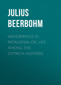Beerbohm Julius - Wanderings in Patagonia; Or, Life Among the Ostrich-Hunters