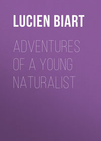 Biart, Lucien  - Adventures of a Young Naturalist