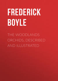 Frederick, Boyle  - The Woodlands Orchids, Described and Illustrated