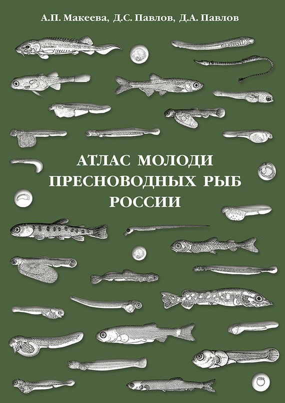 Д. С. Павлов Атлас молоди пресноводных рыб России интернет зоомагазин рыб доставка по россии