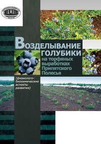 Рупасова, Ж. А.  - Возделывание голубики на торфяных выработках Припятского Полесья