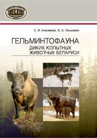 - Гельминтофауна диких копытных животных Беларуси