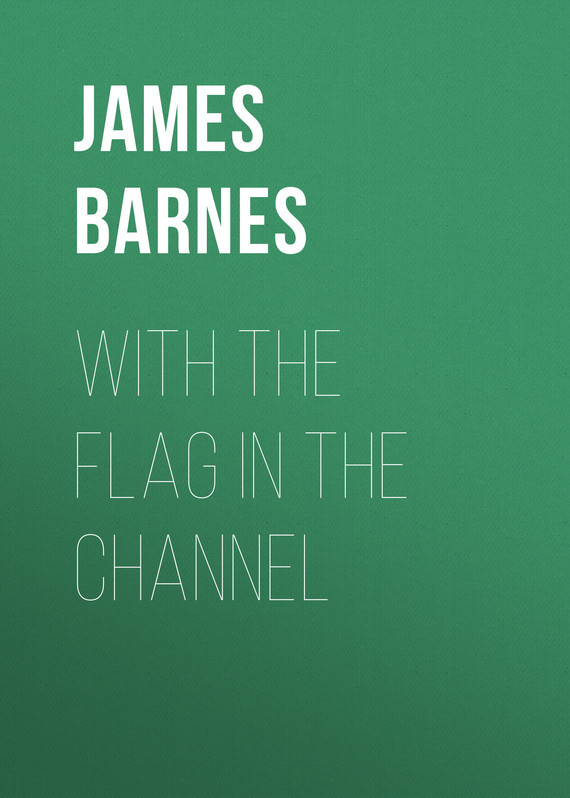 Barnes James With The Flag In The Channel аккумулятор для для barnes