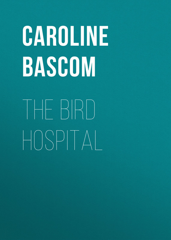 Bascom Caroline Crowninshield The Bird Hospital мебель для ванной comforty