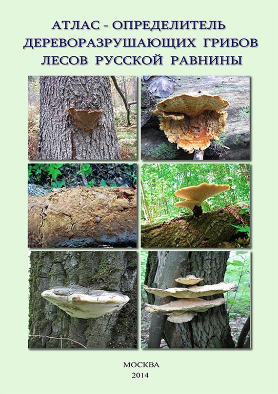 В. Г. Стороженко Атлас-определитель дереворазрушающих грибов лесов Русской равнины мицелий грибов груздь черный 60мл