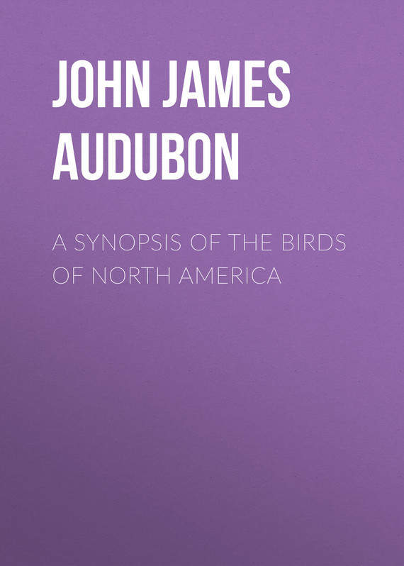 John James Audubon A Synopsis of the Birds of North America