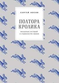 Сергей Носов - Полтора кролика. Несколько историй о странностях жизни