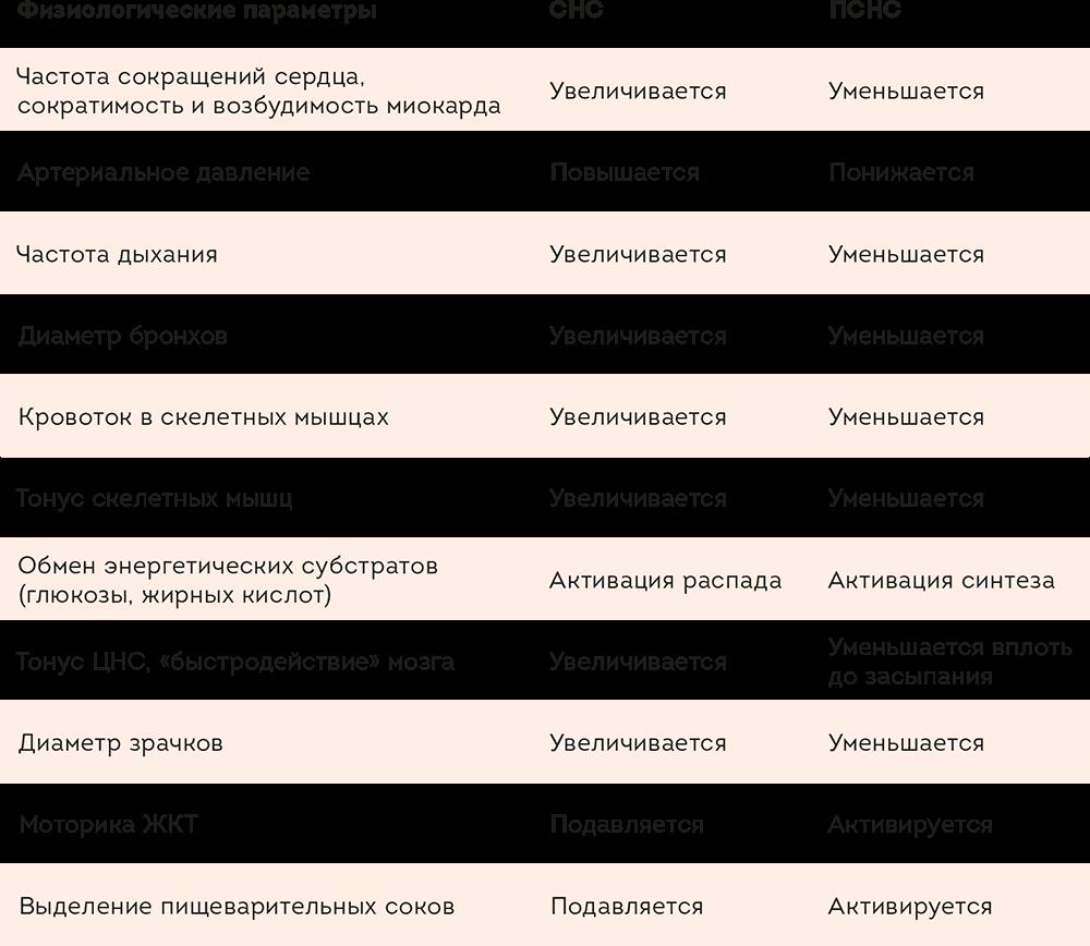 Санкт-Петербургский институт восточных методов реабилитации
