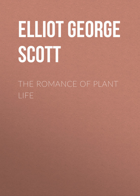 Elliot George Francis Scott The Romance of Plant Life the transferred life of george eliot