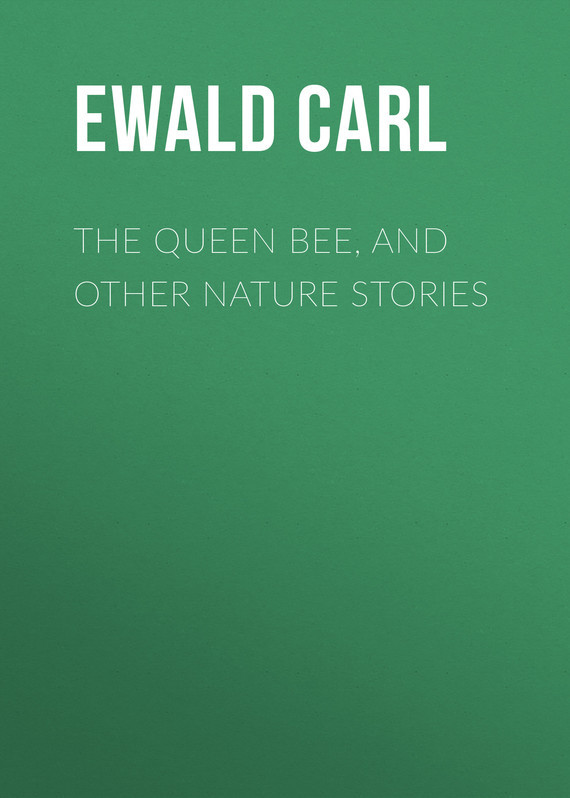 Ewald Carl The Queen Bee, and Other Nature Stories sarah walker ghosts international troll and other stories