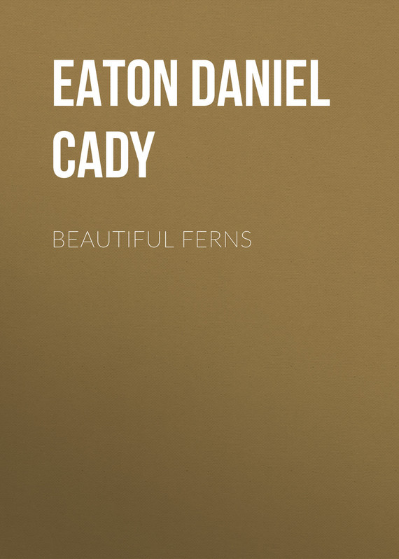 Eaton Daniel Cady Beautiful Ferns beautiful darkness