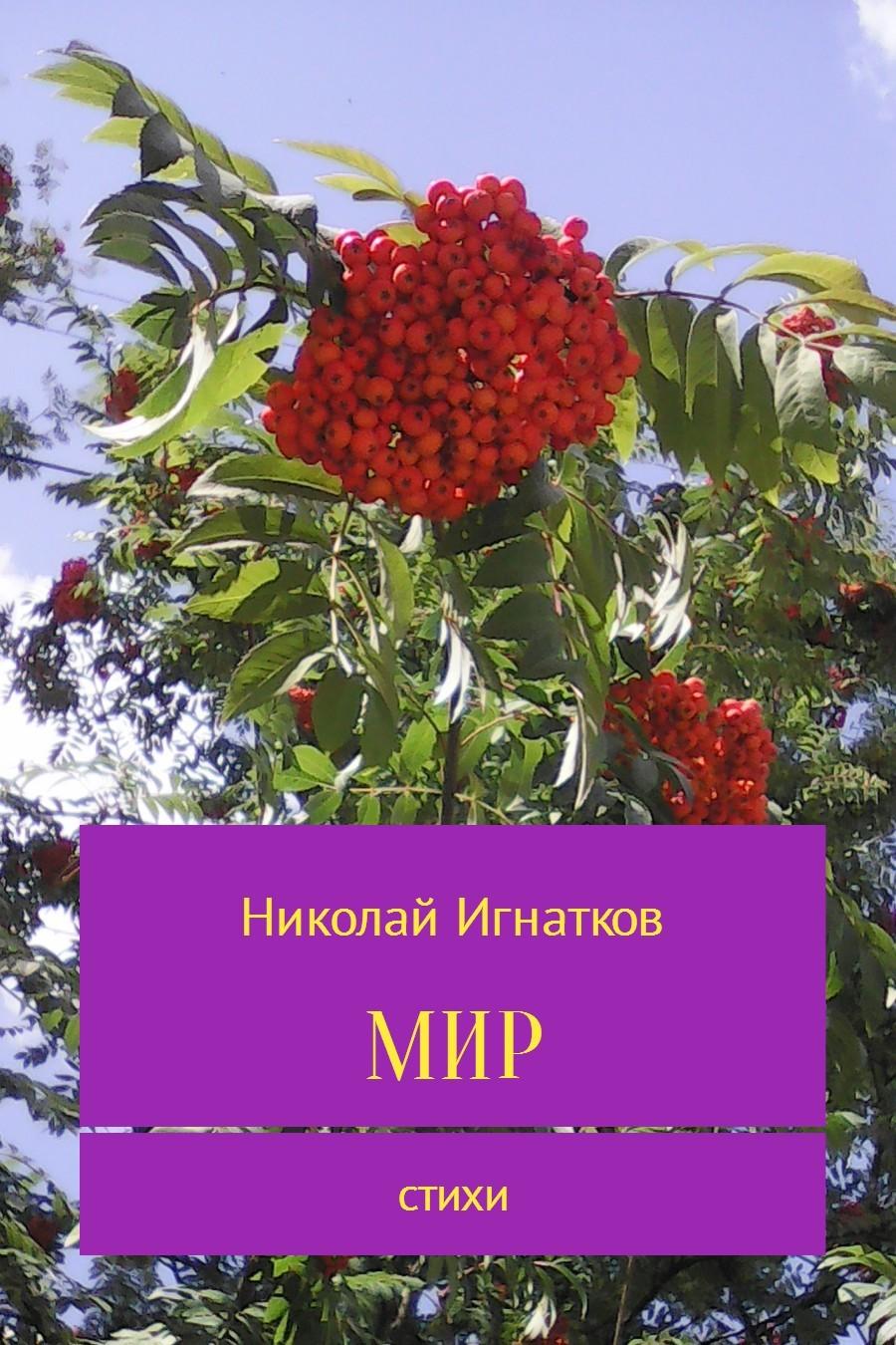 Николай Викторович Игнатков Мир