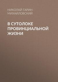 Николай Гарин-Михайловский - В сутолоке провинциальной жизни