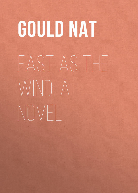 Gould Nat Fast as the Wind: A Novel child l make me a jack reacher novel