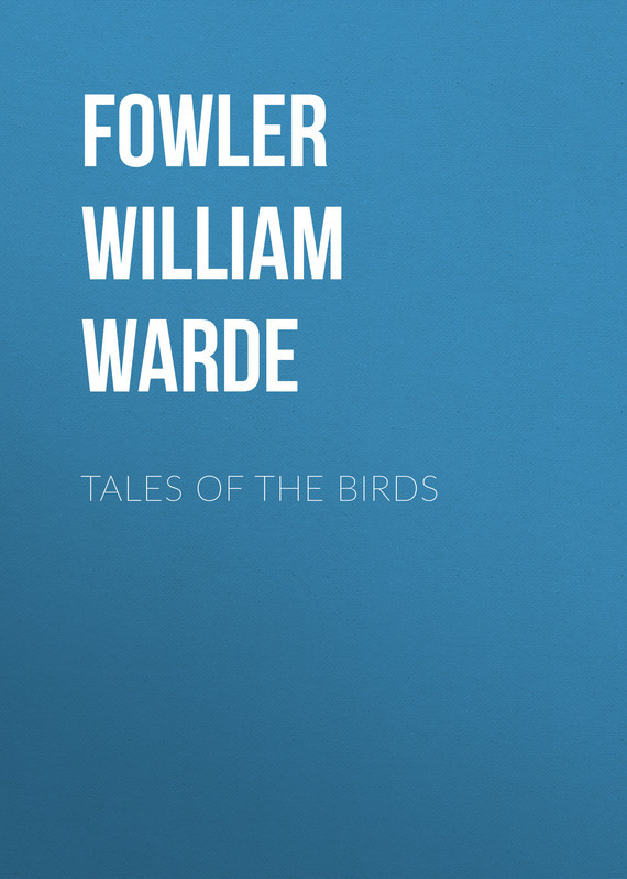 Fowler William Warde Tales of the birds birds the art of ornithology