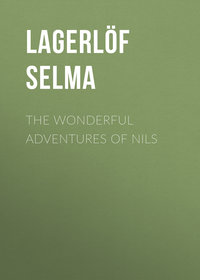 - The Wonderful Adventures of Nils