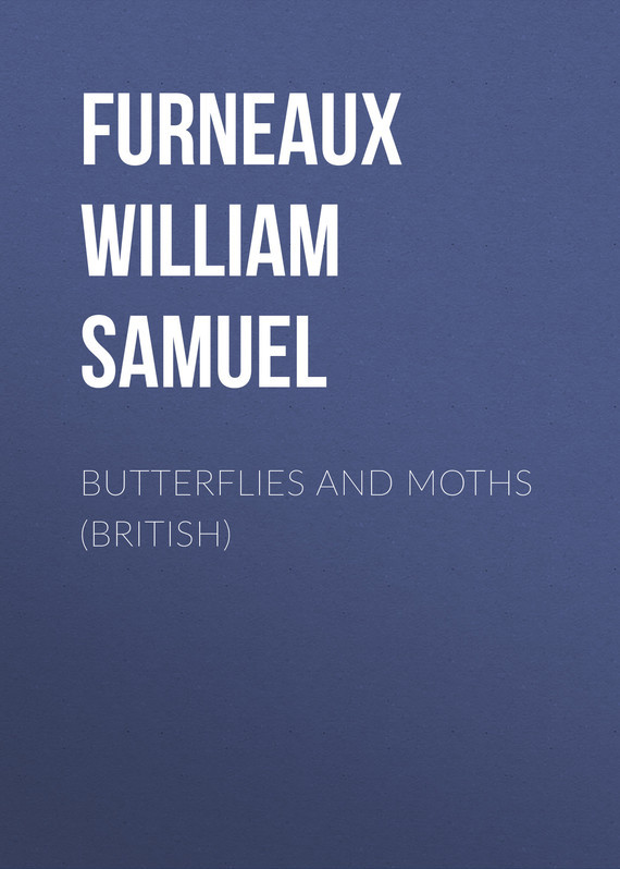 Furneaux William Samuel Butterflies and Moths (British) ksana gilgenberg butterflies
