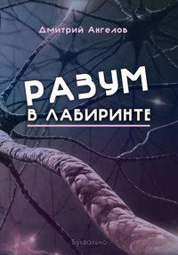 Дмитрий Ангелов - Разум влабиринте