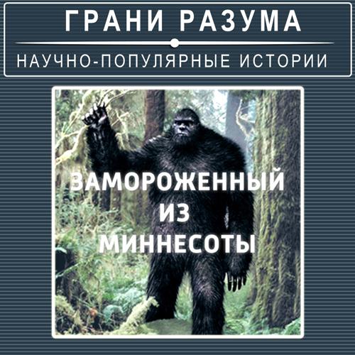Анатолий Стрельцов Загадки XXвека. Замороженный изМиннесоты анатолий стрельцов позолоченная легенда