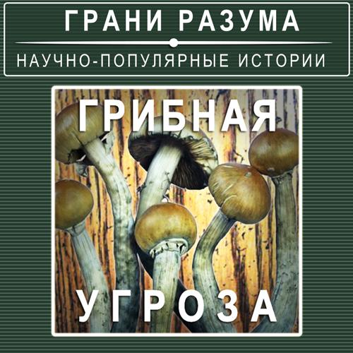 Анатолий Стрельцов Грибная угроза анатолий стрельцов позолоченная легенда