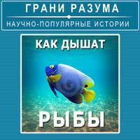 Анатолий Стрельцов - Как дышат рыбы