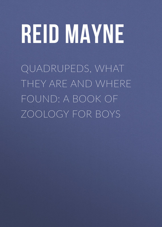 Майн Рид Quadrupeds, What They Are and Where Found: A Book of Zoology for Boys where are maisy s friends
