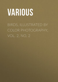 - Birds, Illustrated by Color Photography, Vol. 2, No. 2