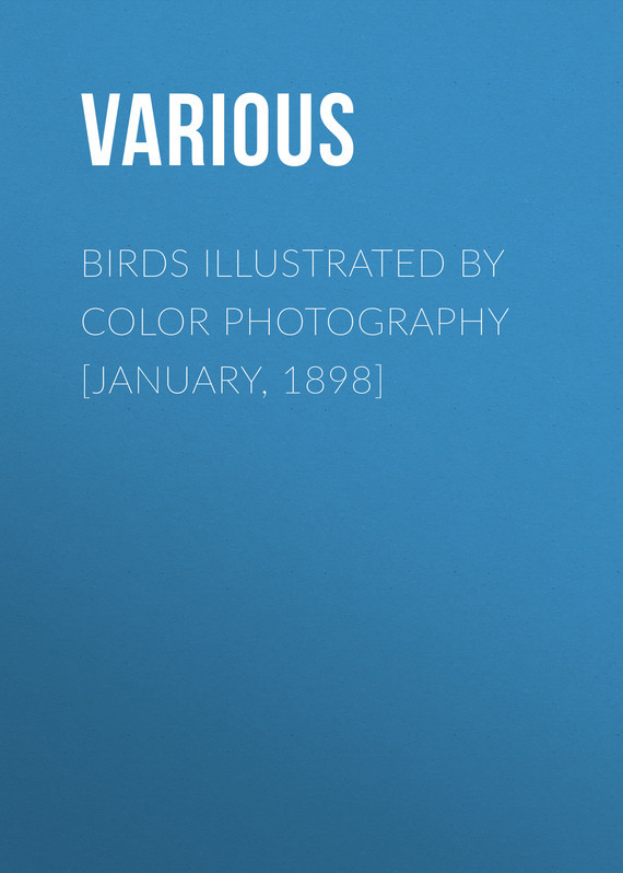 Various Birds Illustrated by Color Photography [January, 1898]
