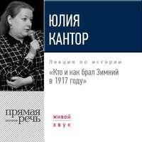Юлия Кантор - Лекция «Кто и как брал Зимний в 1917 году»