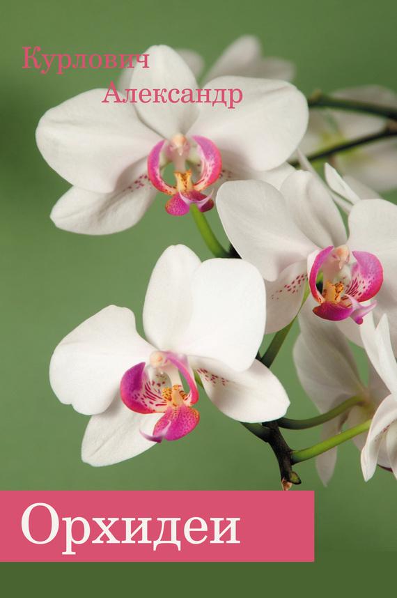 Александр Курлович Орхидеи все цены