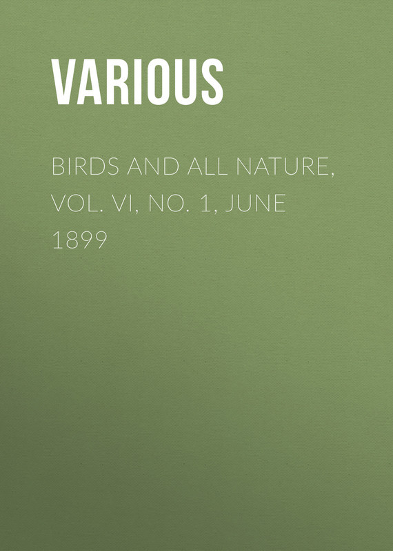 Birds and All Nature, Vol. VI, No. 1, June 1899