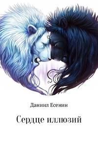 Даниил Аллександрович Стулишенко - Сердце иллюзий