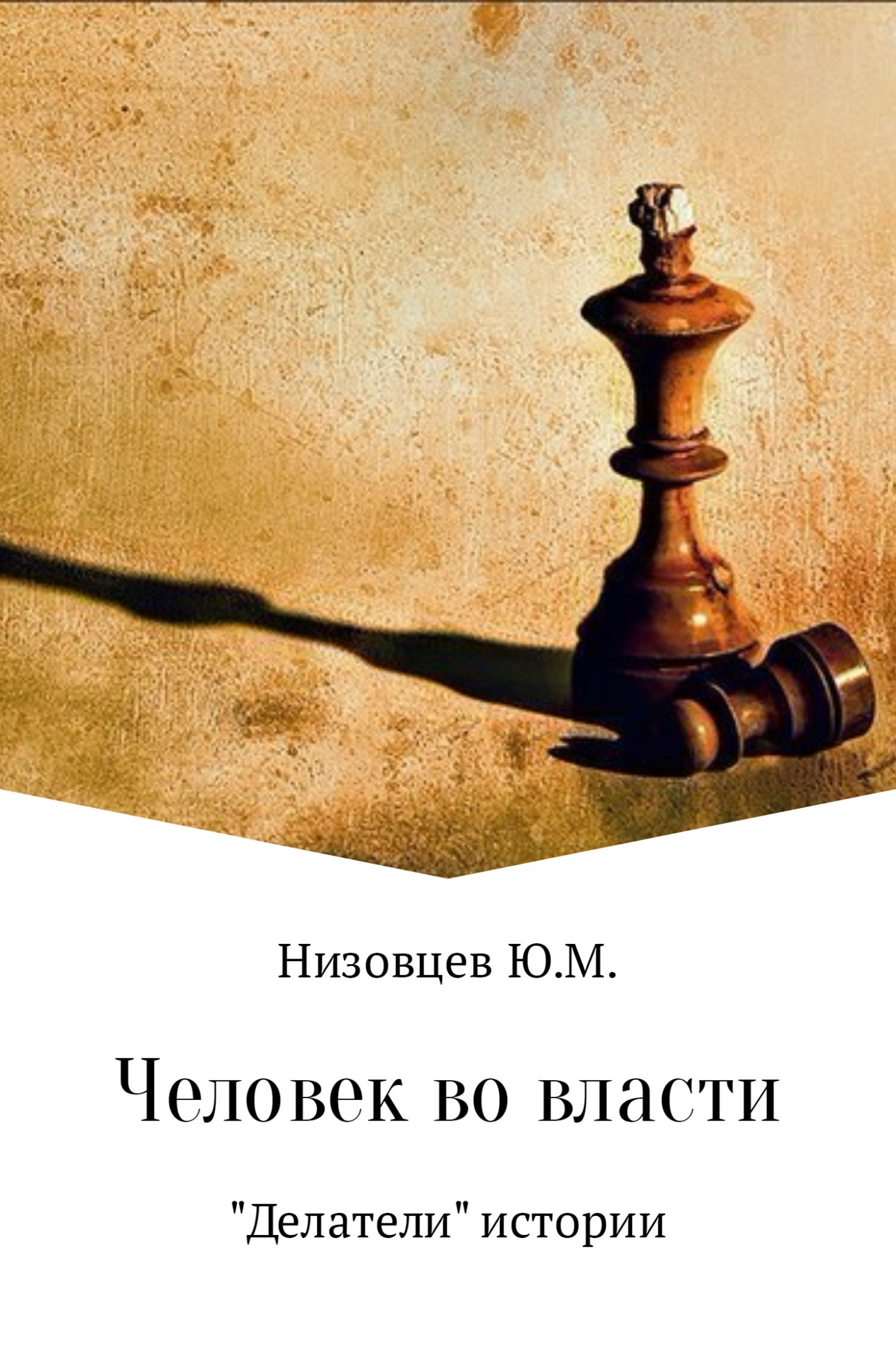 Юрий Низовцев - Человек во власти