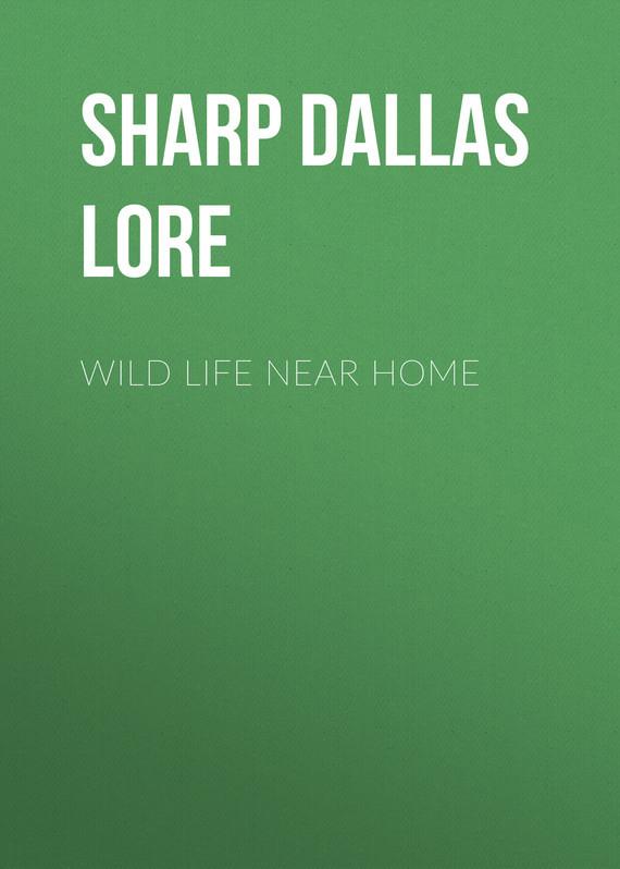 Wild Life Near Home